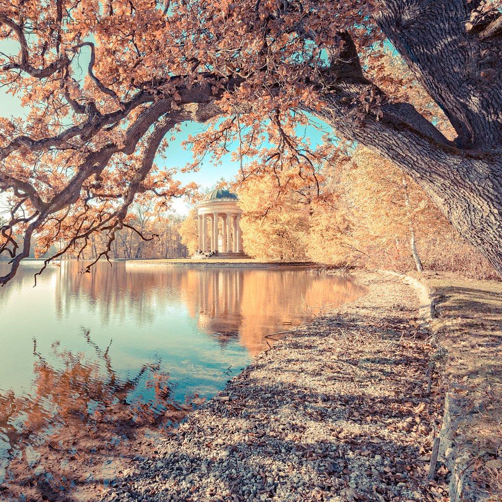 Munich at fall